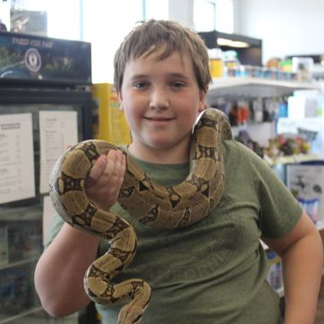 child with reptile