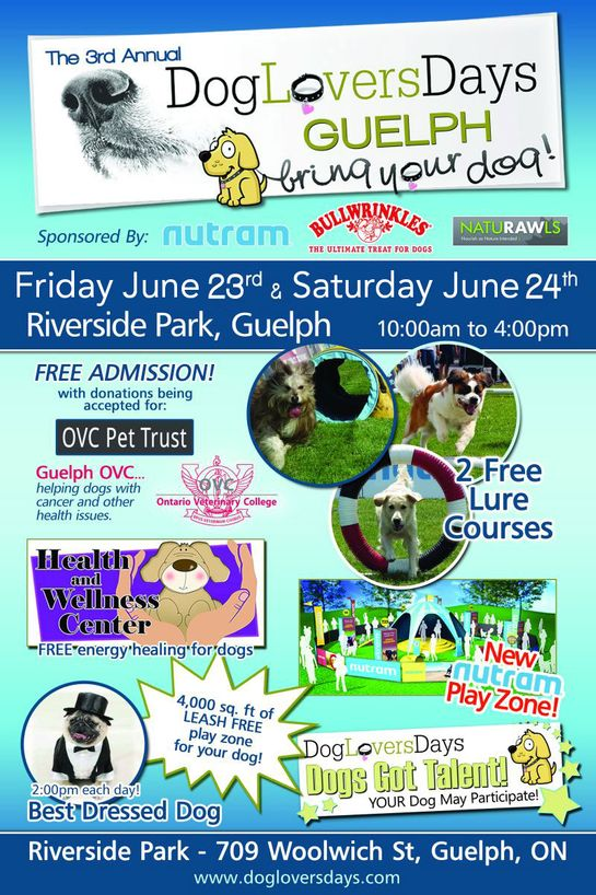 dog lovers flyer
